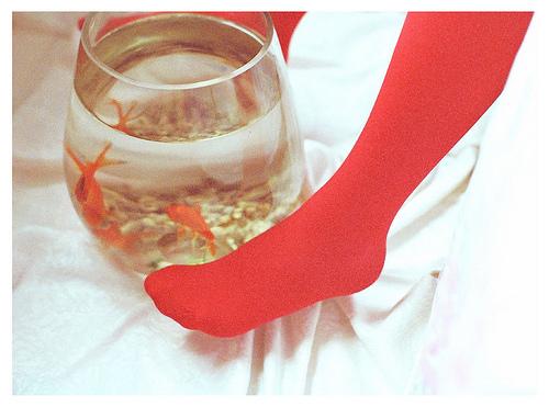 Goldfish_feet